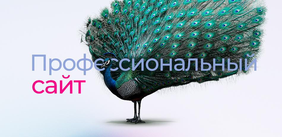 Профессиональный сайт legas.kz